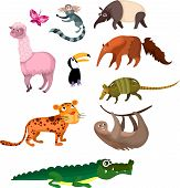 pic of ant-eater  - vector illustration of a cute animal set - JPG