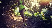 Young Woman Trail Runner Walking On Tropical Forest Trail poster