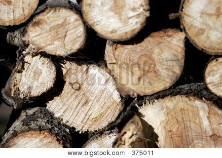 Wood Pile Wide