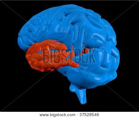 Blue brain with highlighted red  temporal lobe on black background