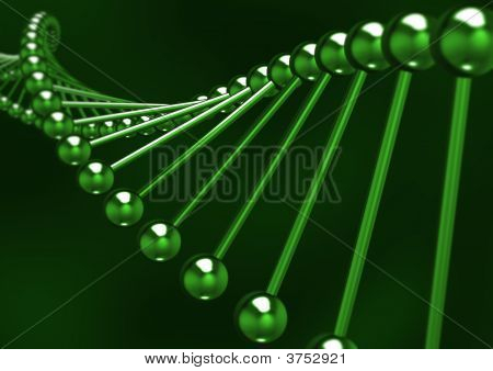 Dna Structure 01
