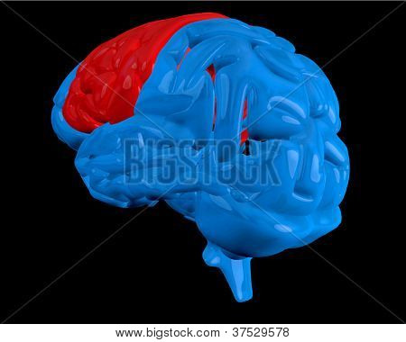 Blue brain with highlighted red cerebrum on black background