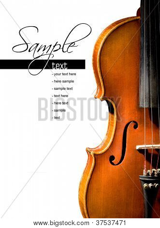 ?Violin on white background (easy to remove the text)