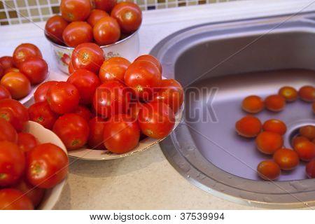 Tomate fresco húmedo sobre un plato preparado para pasteurización