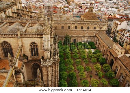 Orange Garden And Cathedral Of Seville Spain