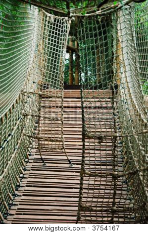 Sturdy Rope Bridge
