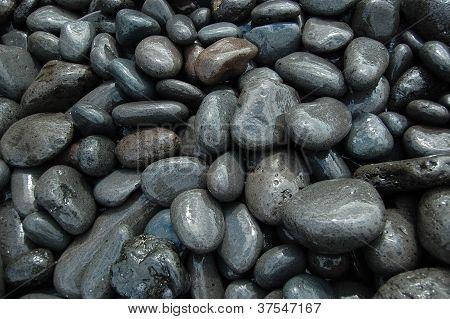 nasse Steine am Strand