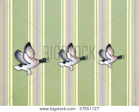 Three Flying Ducks On Old Wall
