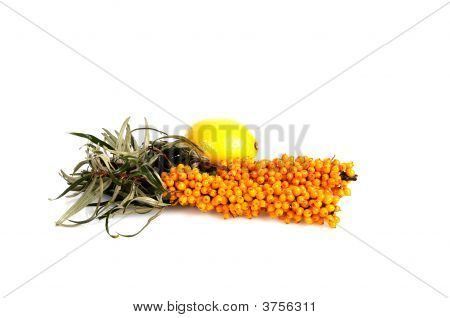 Sea-Buckthorn And Lemon.