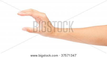 Women Hand To Hold Business Card