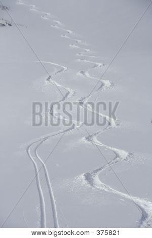 Perfect Ski Tracks