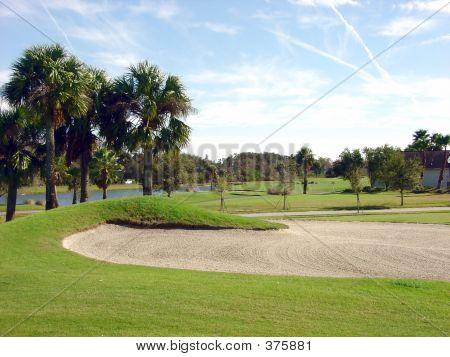 Bonito Golf