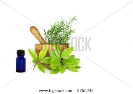 Rosemary And Bay Leaf Herbs