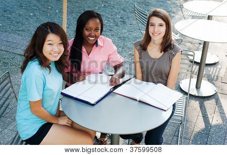 Three Girls Outside Studying