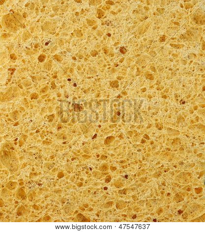 Sponge Structure From Cellulose