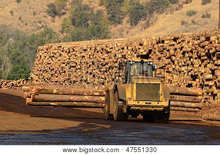 Moving Logs