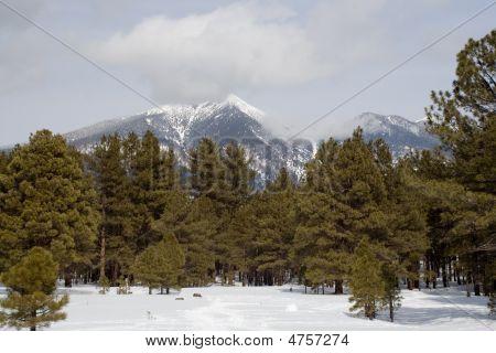 Mt. Humphrey