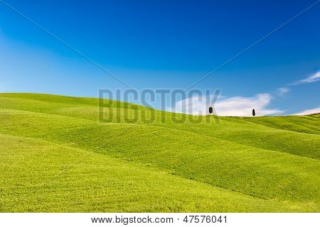 Rolling hills with trees and blue skies, Tuscany, Italy