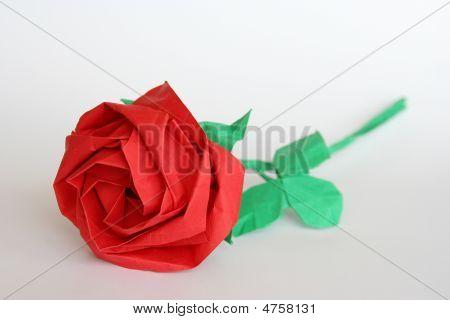 Paper Rose
