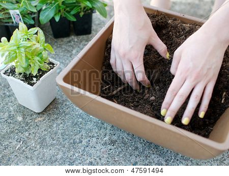 Hands Mix Up Planting Soil In Square Planter