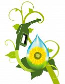 stock photo of ethanol  - A bio fuel plant with sunflower ethanol featured - JPG