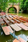 Moored punts on the river Cherwell in Oxford