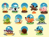 Cartoon Animals And Pets With Background