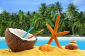 stock photo of coco  - half coconut with straws starfish and shells in a tropical landscape - JPG
