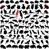 stock photo of platypus  - Hundred silhouettes of wild rare animals from Australia Tanzania and New Zealand - JPG