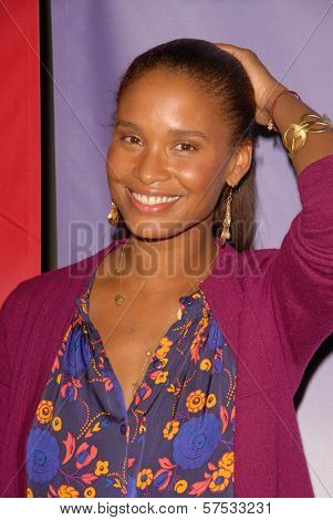 Joy Bryant at NBC Universal's Press Tour Cocktail Party, Langham Hotel, Pasadena, CA. 01-10-10