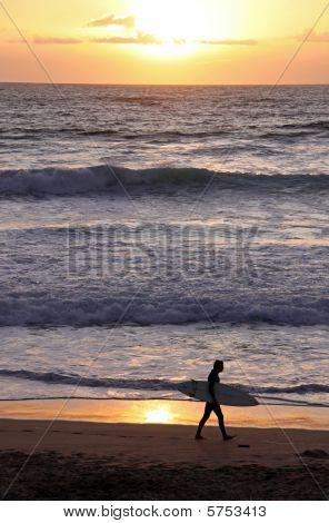 Silhueta de um surfista com prancha de surf, andando ao longo da linha de água na praia surf famoso punho