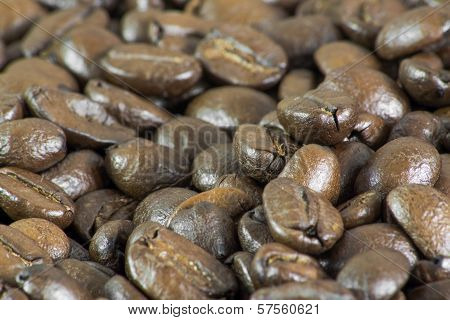 Macro Of Coffee Beans Ii