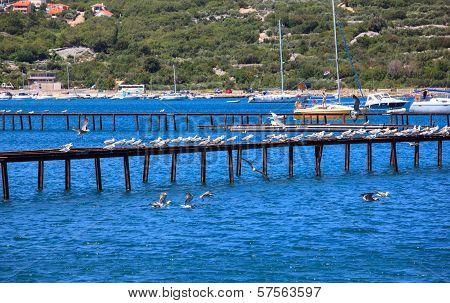Punat, Croatia