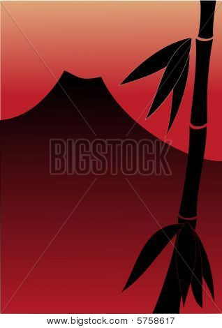Bamboo and red sunset
