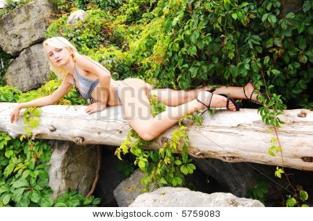 Bikini Girl On The Old Tree.