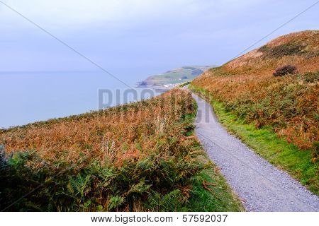 Path Along The Coast Of Wales. Landscape Format