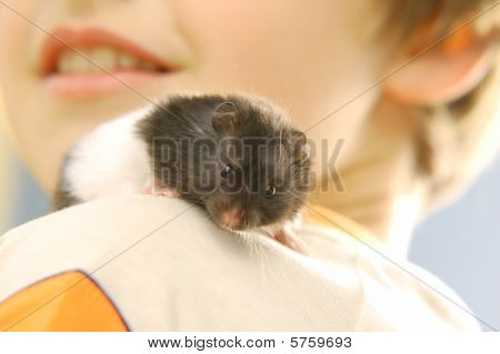 Boy With His Hamster