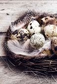 Easter Basket With Easter Eggs On Wooden Background. Quail Easter Eggs In A Nest On  Wooden Table Cl