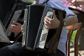 image of accordion  - Young musician playing accordion in street orchestra - JPG