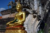 foto of budha  - Gold Budha in Thailand with back of naga - JPG