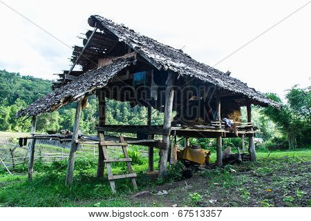 Hut  In Field At Rural