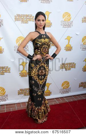 LOS ANGELES - JUN 26:  Magda Apanowicz at the 40th Saturn Awards at the The Castaways on June 26, 2014 in Burbank, CA