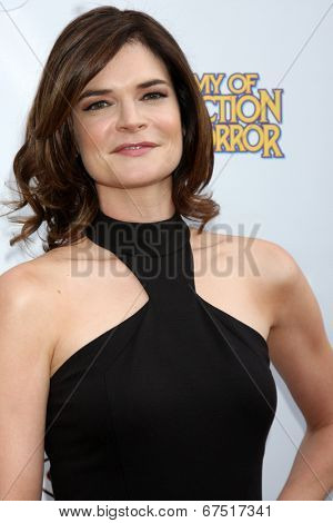 LOS ANGELES - JUN 26:  Betsy Brandt at the 40th Saturn Awards at the The Castaways on June 26, 2014 in Burbank, CA