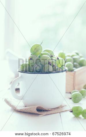Fresh Ripe Green Gooseberry