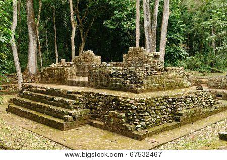 Copan Mayan Ruins In Honduras