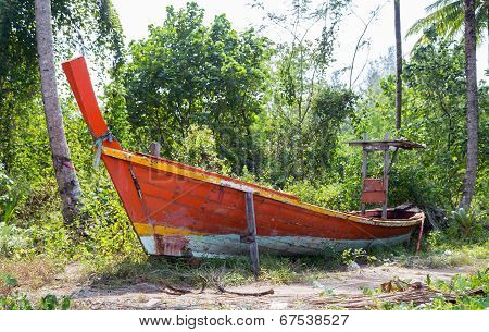Jungle And Boat Wreck
