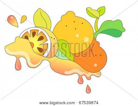 The view of mandarin