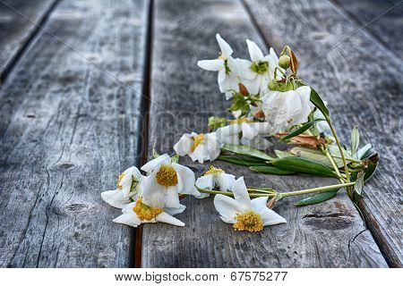 A bunch of flowers left to wilt and die on a rustic wooden picnic table.
