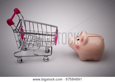 Shopping Cart Versus Pig Money Box