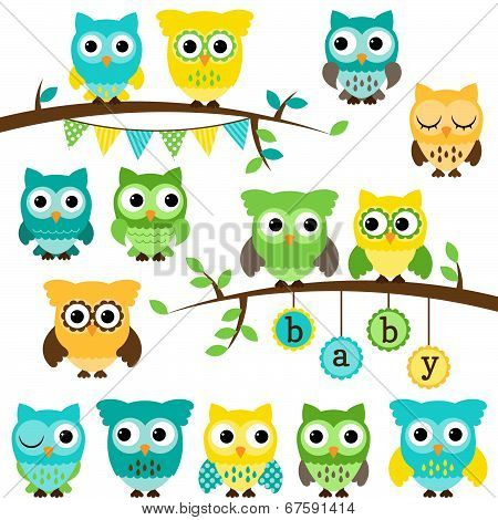 Vector Collection of Gender Neutral Baby Shower Themed Owls and Branches